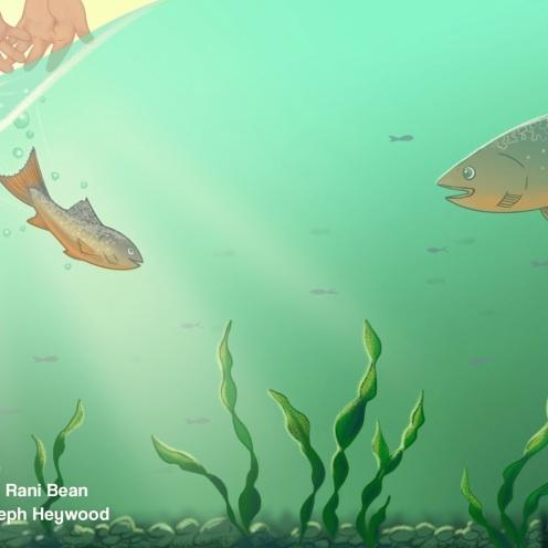 RB_Fish5